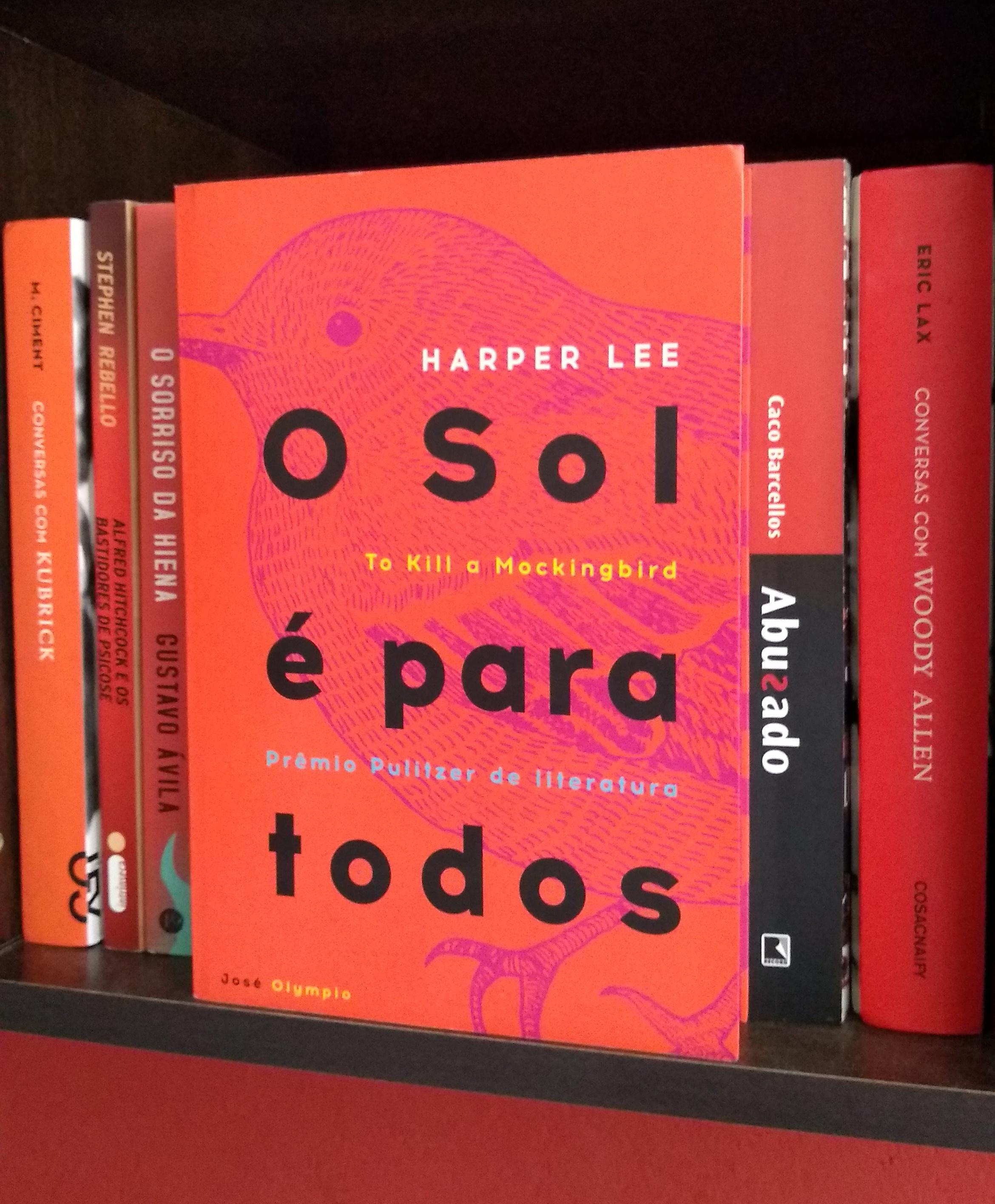 Livro O sol é para todos. Foto: Juh Oliveira