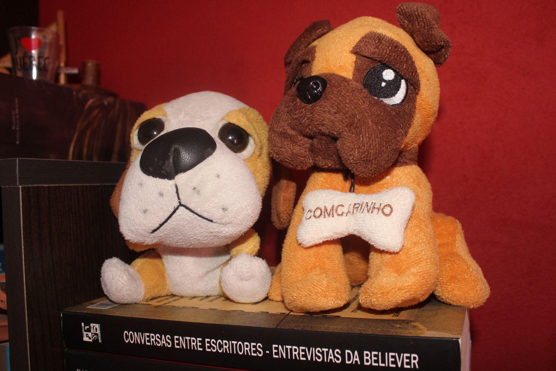 Cachorros na estante. Crédito: Juh Oliveira