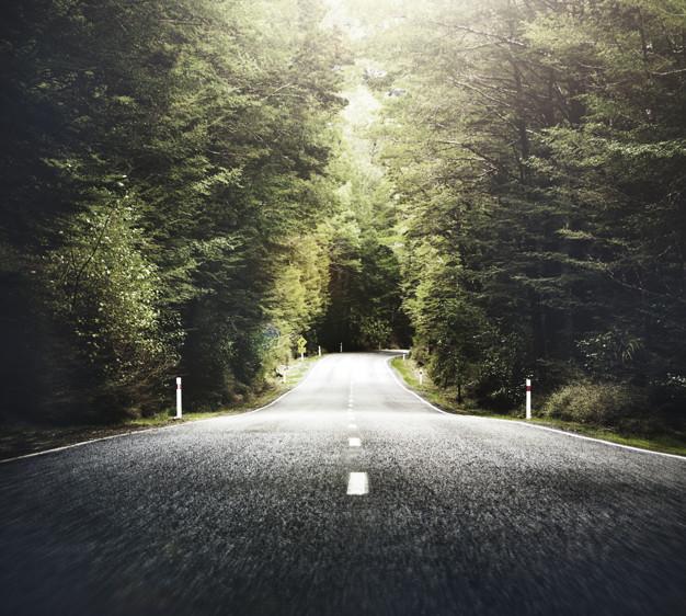 Estrada vazia. Imagem: Pinterest.