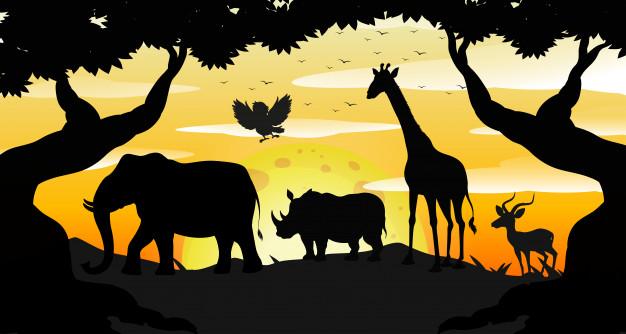Lembrança do zoológico. Imagem: Free Pik.
